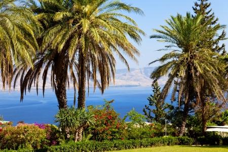 mare di Galilea, paesaggio Archivio Fotografico
