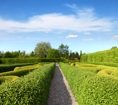 topiary: Lush Green Topiary in a Tranquil Garden  Stock Photo