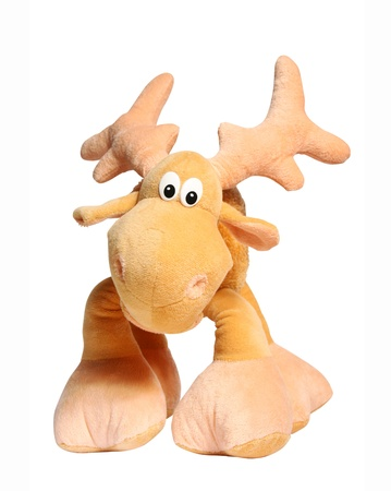 Toy deer isolated photo