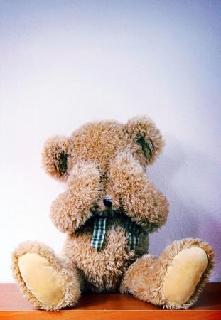 Sleeping teddy bear photo