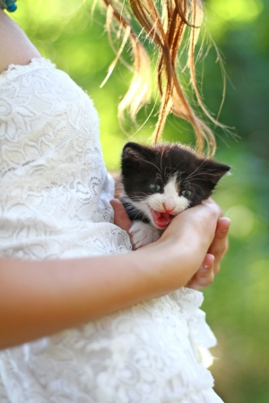 caucasian girl with kitten on her hands photo