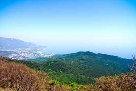View at the black sea from mountain with trees on sunny day withot clouds photo