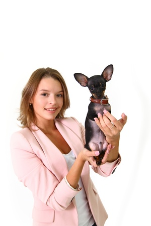 Lovely young woman holding Chihuahua Stock Photo - 17213363