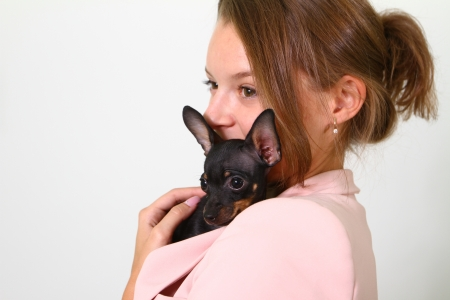 Lovely young woman with Chihuahua isolated on white background Stock Photo - 17334242