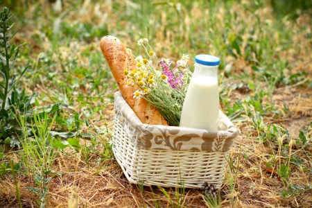 Picnic basket with daisies, bread and milk in  open air photo