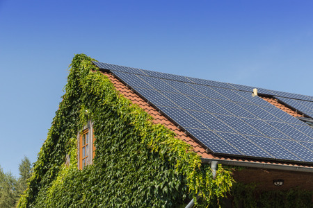 roof with ivy and solar cells and blue sky Stock Photo
