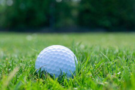 Golf ball on lawn
