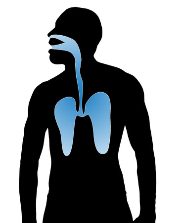 colds: silhouette breathe airways man on white background  Illustration