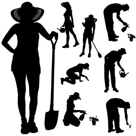 Vector silueta de un jardinero en el fondo blanco. Ilustración de vector