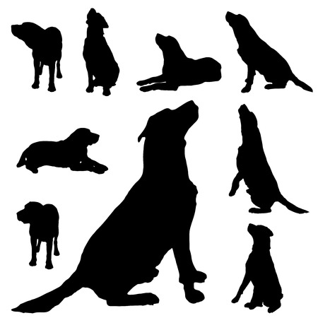 Vector silhouette of a dog on white background. Illustration