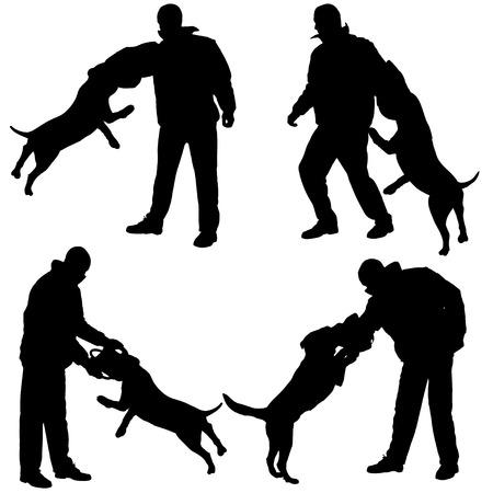 perro policia: Vector silueta de un hombre que entrena al perro en defensa.