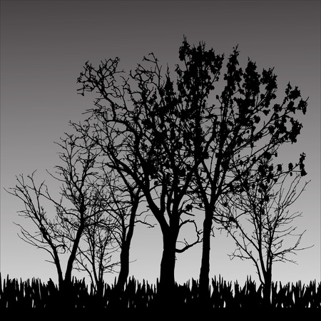 Vector silhouette of tree on a gray background. Vector