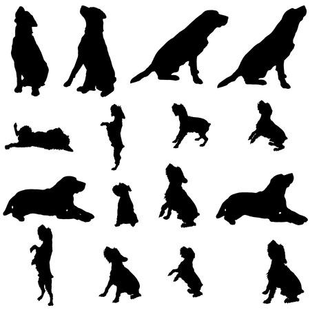 siluetas de animales: Vector silueta de un perro en un fondo blanco. Vectores