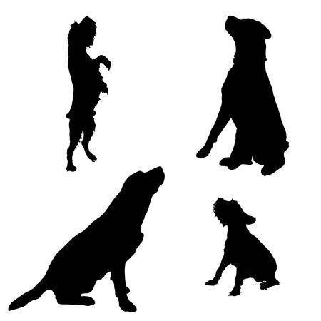 Vector silueta de un perro en un fondo blanco. Vectores