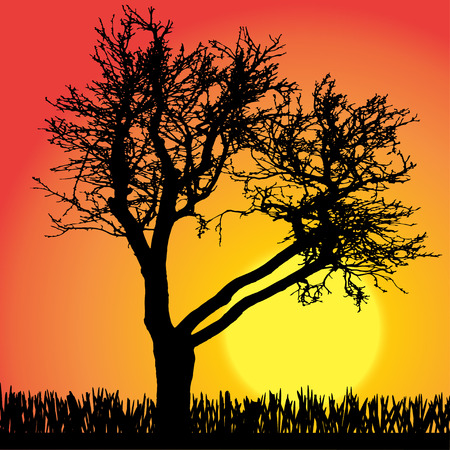 silhouette of tree on orange background. Vector