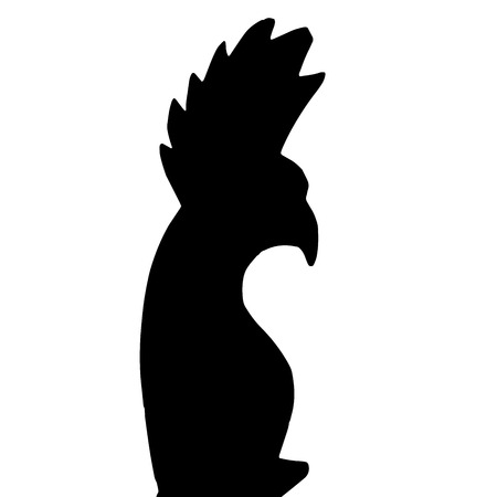 Vector silhouette of the parrot on white background. Vector