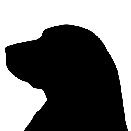 labrador dog: Vector silhouette of a dog on a white background.