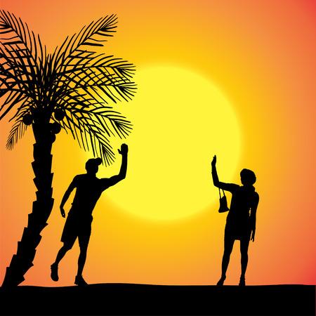 dattelpalme: Silhouette eines Paares bei Sonnenuntergang mit Palmen.