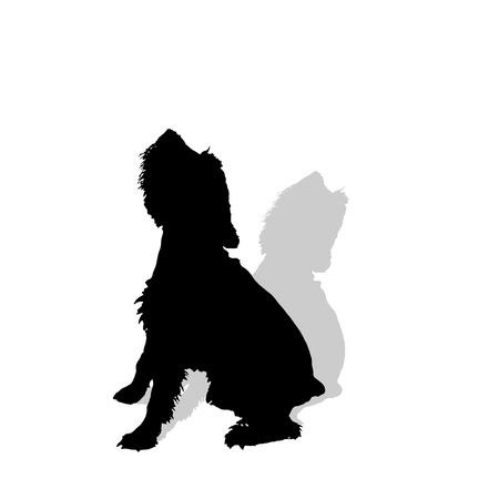 puppy: Vector silhouette of a dog on a white background.