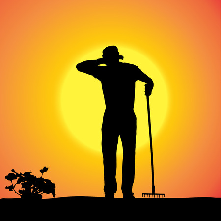Vector silhouette of a gardener in the garden at sunset. Vector