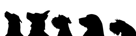 hunting dog: Vector silhouette of a dog on a white background.
