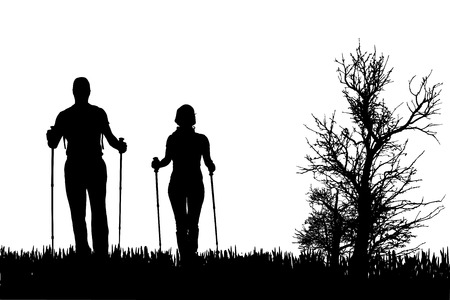 nordic nature: Vector silhouette of people with nordic walking in nature.