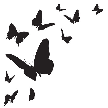 Vector white background with different colored butterflies. Vector