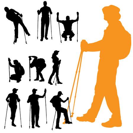 trekker: Vector silhouette of people with nordic walking.
