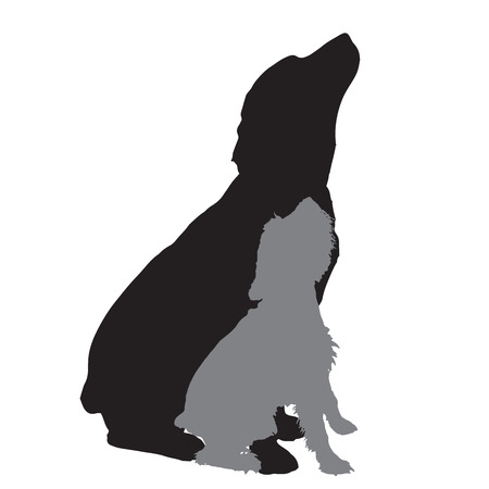big dog: Vector silhouette of a dog on a white background.