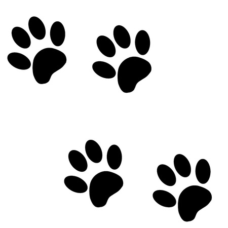 white paw: Vector silhouette dog paw on a white background. Illustration