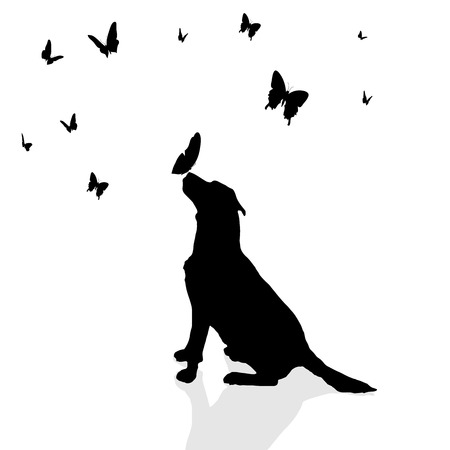 dog outline: Vector silhouette of a dog surrounded by butterflies.
