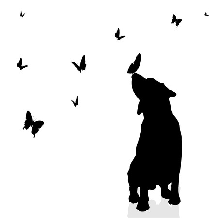 labrador puppy: Vector silhouette of a dog surrounded by butterflies.