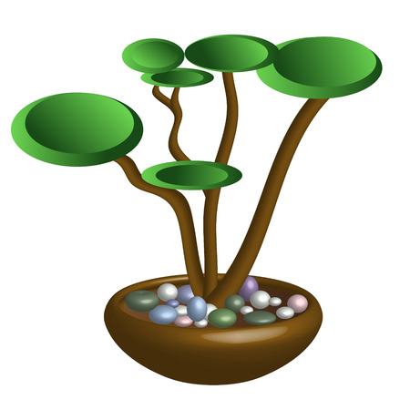 Vector image of a bonsai on a white background. Vector
