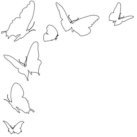 Vector illustration of butterflies on a white background. Vector
