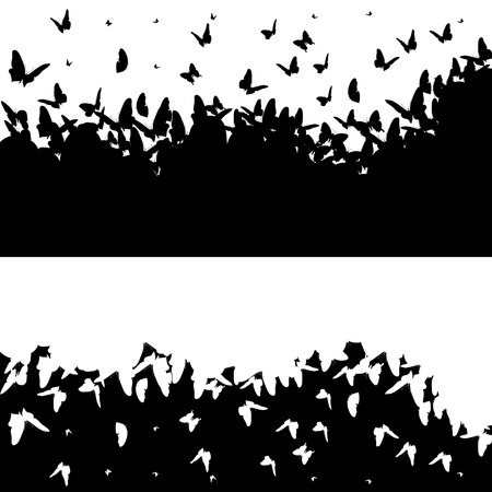 butterfly flying: Vector illustration with butterflies on a black background.