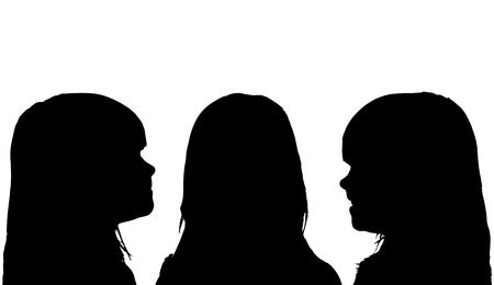 profile silhouette: Vector silhouette profile face girls on a white background.