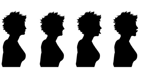profile silhouette: Vector silhouette of a woman in profile on a white background. Stock Photo