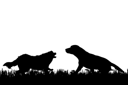 wrestle: Vector silhouette of a dog in nature.