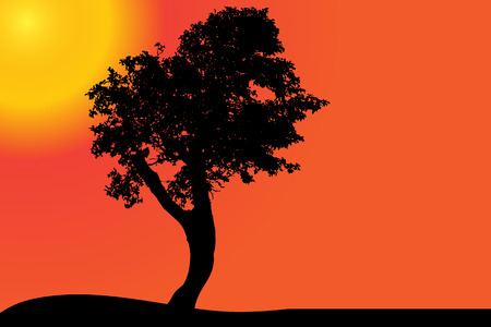 ouside: Vector silhouette of a tree in the desert at sunset.