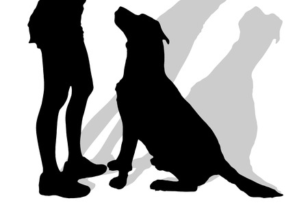 obedience: Vector silhouette of a woman with a dog on a white background. Illustration
