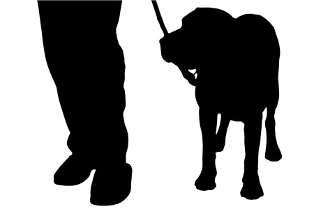 dog walker: Vector silhouette of a man with a dog on a white background.