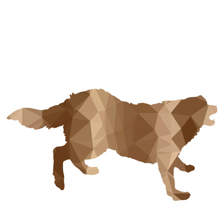 anger abstract: low poly silhouette dog on a white background Illustration