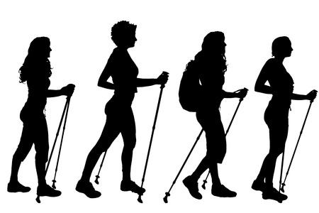nice body: Vector silhouettes of women on a white background. Illustration