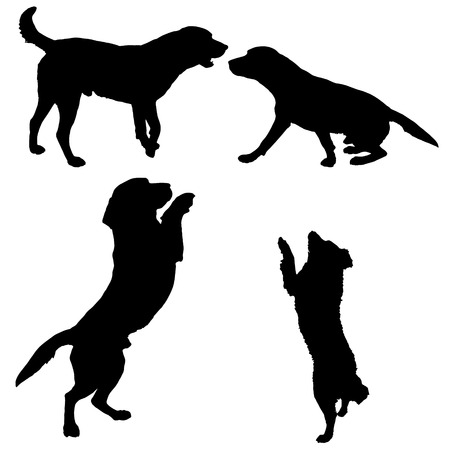 dog run: Black silhouette of dogs on white  background.