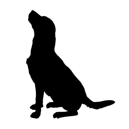 dessin noir et blanc: Vector silhouette d'un chien sur un fond blanc.