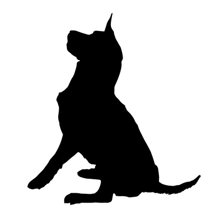 plead: Vector silhouette of a dog on a white background.