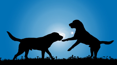 perro corriendo: Vector silueta de un perro en la naturaleza. Vectores
