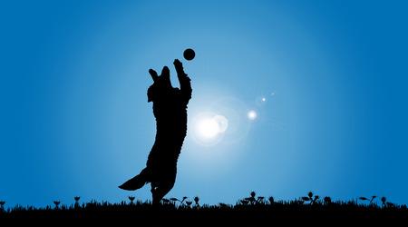 Vector silueta de un perro en la naturaleza.