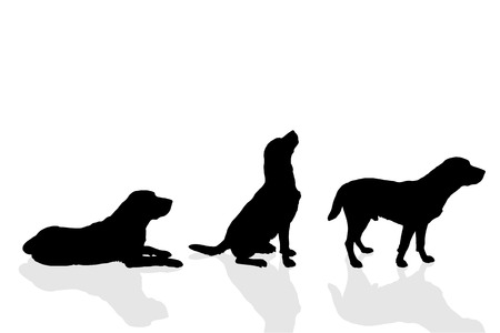 sit stay: Vector silhouette of a dog on a white background.