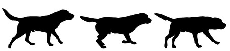 running: Vector silhouette of a dog on a white background.